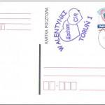pzf_torun_wydawnictwa_2011 (1)